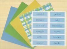 BEAUTIFUL PASTEL 6 X 6 PAPERS 8 SHEETS PLUS 12 LABELS ~ LIGHT BLUE