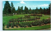 *1960s Rose Garden Manito Park Spokane Washington Vintage Postcard A6