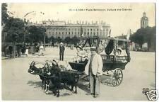 69  LYON bellecour voiture de chévres  1905     (8)