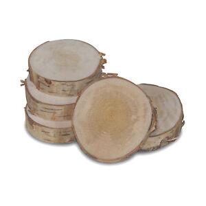 Birkenscheibe Holzscheibe Durchm. 5-10 cm 10 Stück Baumscheiben Birkenscheiben