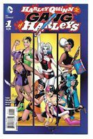 Harley Quinn and Her Gang of Harleys 1 Batman Suicide Squad
