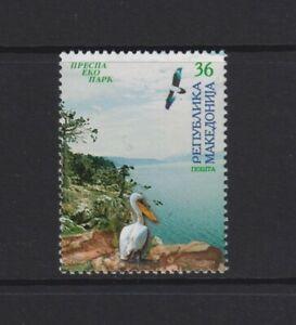 Mazedonien - 2004, Prespa National Park, Pelikan Vogel Briefmarke - MNH - Sg 457
