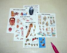 Miniature Large Medical or Laboratory Posters, Set of 5: DOLLHOUSE 1/12