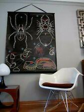 VTG DR Auzoux Sougy Anatomy Ox Spider Araigné Wall Chart 1958 Poster Print Decor