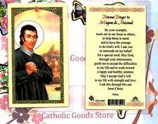 Saint Eugene - Novena Prayer to St. Eugene de Mazenod - Laminated  Holy Card