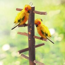 Funny Parrot Bird Wooden Rotate Ladder Stand Play Toys Hamster Cage Climbing New