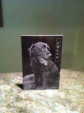 """6x4x3/8"""" lase engraved granite with photo"""