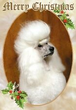 Poodle Dog A6 Christmas Card Design XPOODLE-15 by paws2print