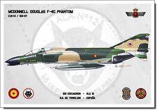 F-4C Phantom Aviation Art Spanish Air Force Ejército del Aire España Spain Print
