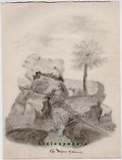 Tirschenreuth Hohenwald Wolfenstein Fels Bleistift Zeichnung Kalb Erlangen 1887
