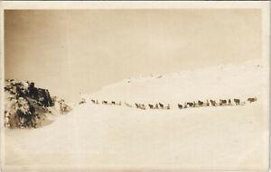 PC U.S. ALASKA, CARAVAN IN THE SNOW, Vintage REAL PHOTO Postcard (b29178)