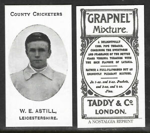 NOSTALGIA REPRINT TADDY & CO W.E.ASTILL LEICESTERSHIRE  COUNTY CRICKETERS