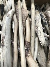 Driftwood 55 pieces Mixed Wood From Northumbrian coast arts & crafts