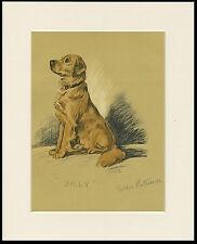 GOLDEN RETRIEVER CHARMING 1930'S DOG ART PRINT by MAC LUCY DAWSON READY MOUNTED
