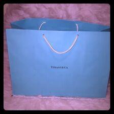 Large Tiffany & Co bag 15.3x11