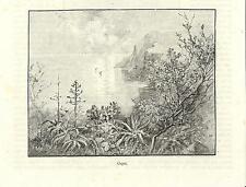 Stampa antica CAPRI Veduta panoramica golfo di Napoli 1892 old antique print