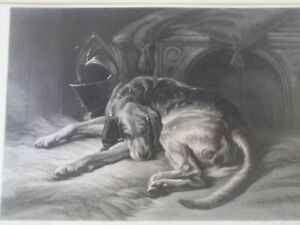 'Sleeping Bloodhound'   B&W Print by Sir Edwin Landseer