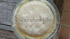 42 y/o Heritage Sourdough Starter - Wholegrain Wheat - LIVE - Certified Organic