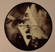 """THELEM - Haunted Harmonics - Vinyl (12"""") Artikal - Dubstep"""
