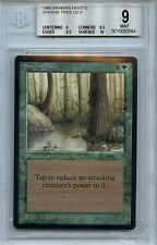 MTG Arabian Nights Singing Tree BGS 9.0 (9) Mint Magic Card WOTC 3564