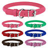 Rolled Leather Dog Collar Small Round Collars For Dogs Puppy Cat