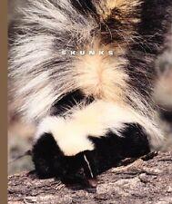 Skunks (World of Mammals (Childs World)