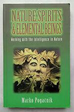MARKO POGACNIK.NATURE SPIRITS & ELEMENTAL BEINGS.1ST S/B 1997.ILLS.WEB OF LIFE