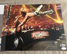 UNDERTAKER & HBK SHAWN MICHAELS AUTOGRAPHED-SIGNED WWE 11x14 WM Match JSA