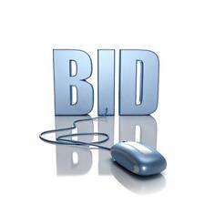 Online Auction Website Bid Buy Business MARKETING PLAN MS Word/Excel NEW!