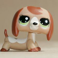 LPS Littlest Pet Shop #2035 Dachshund Dog