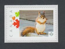 SQUIRREL = RODENTS = MNH stamp Canada 2014 [pp9cw4/3]