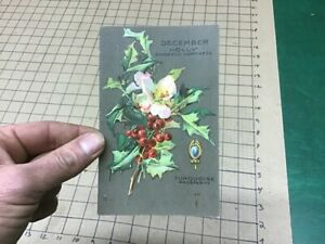 UNUSED Post Card - DECEMBER HOLLY domestic happiness & turquoise prosperity