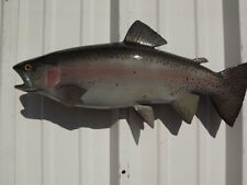 """21"""" Rainbow Trout Two Sided Fish Mount Replica"""