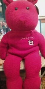 """Dale Earnhardt Jr. Teddy Bear 25"""" Collectible still has tags..no nose, see photo"""