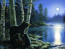 Bears LED Lighted Canvas Art 16 x 12 Home Decor Nature Moon Wildlife Rustic New