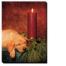 Silent Night Lighted Wrapped Canvas Art Print Wild Wings Puppy Lover Christmas