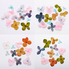 Dried Flowers 3D Nail Art Decoration Beauty for Nail Polish UV Gel Tips Salon