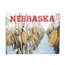 Nebraska Cornfield Football Postcard