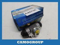 Cylinder Rear Brake Rear Wheel Brake Cylinder FORD Escort Fiesta