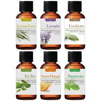Essential Oil Gift Set Kit 6 - 10 ml. 100% Pure Therapeutic Grade Oils