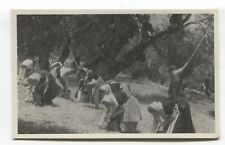 Mallorca - Recogiendo Aceitunas, Picking Olives - c1950's Spain postcard