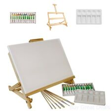 Art Supply Kit Acrylic Painting Set 21 Piece Custom Artist Tools Starter Kit New