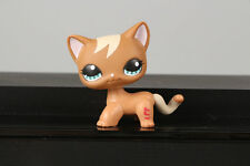 LPS  #1170 Brown Tan Curls Kitten Cat Kitty Collection