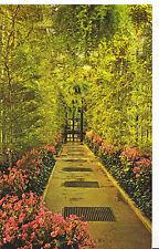 America Postcard - Longwood Gardens - Kennett Square - Pennsylvania   SL401