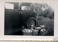 Voiture ancienne Citroën Rosalie Panier de Pommes   - photo ancienne an. 50 60