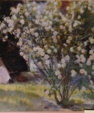 Roses By Kroyer