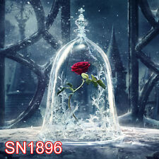 INDOOR Film Rose 10x10 FT CP  PHOTO SCENIC BACKGROUND BACKDROP SN1896