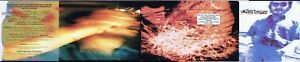 Walter Becker - 11 Tracks of Whack CD Rare Steely Dan Donald Fagen