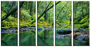 Tropical Forest Stream Canvas Print Wall Art for Home and Office Framed Picture