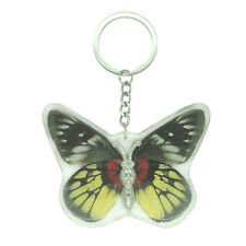 Real Red Base Jezebel Butterfly Keyring